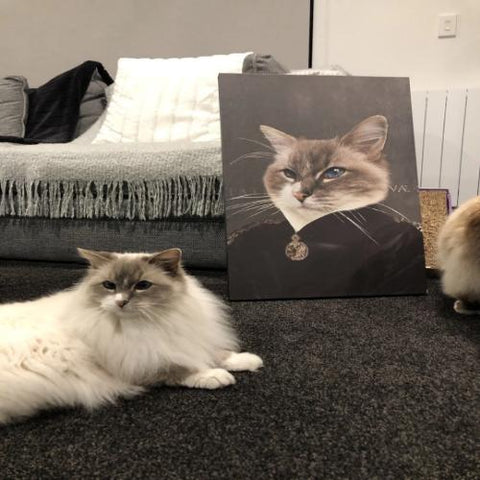 EMPRESS - CUSTOM CAT CANVAS (Premium)