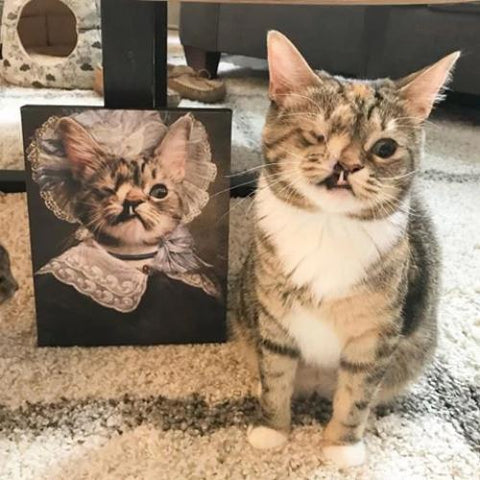 LADY PURRINGGALE - CUSTOM CAT CANVAS (Premium)