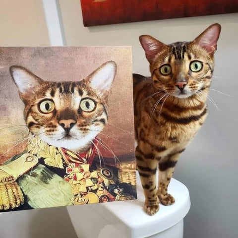 GENERAL OSBERT - CUSTOM CAT CANVAS (Premium)