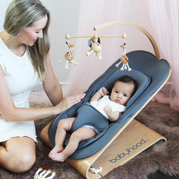 Babyhood Tommer Bouncer - Parnell Baby Boutique