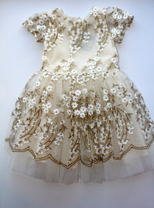 Ivory/Gold Embroidered Dress