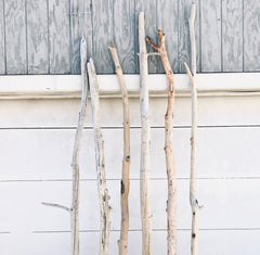 Large Driftwood Branch 8 FT for Coastal Wall Decor