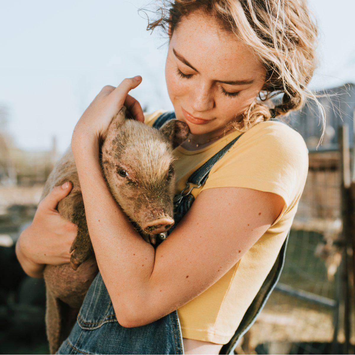 What Is an Animal Sanctuary: Taking the Best Care of Rescued Animals