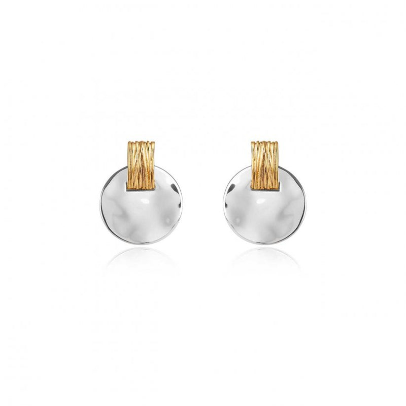 2 Toned Disc Earrings