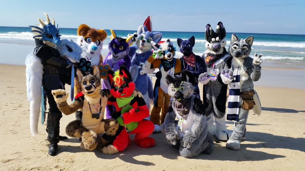 2019 Furry Down Under - Back to the Beach Surfers Paradise, Australia