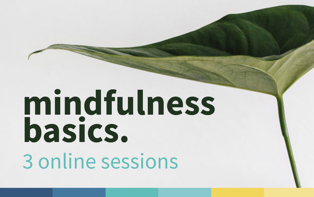 Mindfulness Basics