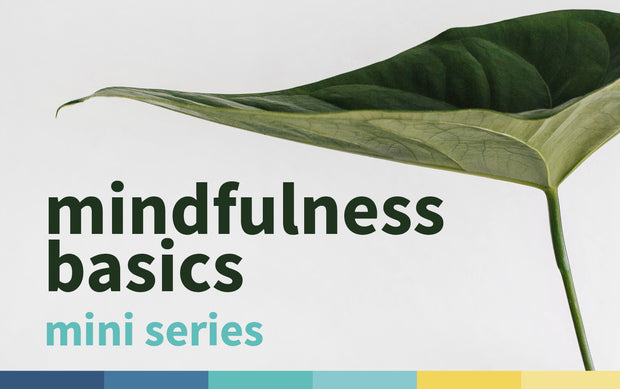 Free Mindfulness Basics Mini Series | April - May