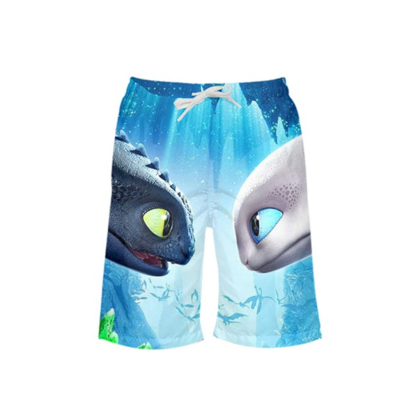 Boys How To Train Your Dragon 3 Toothless & Light Fury All-Over Print Trunks Beach Shorts