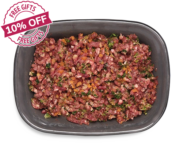 Delicious Raw Food for Your Dog