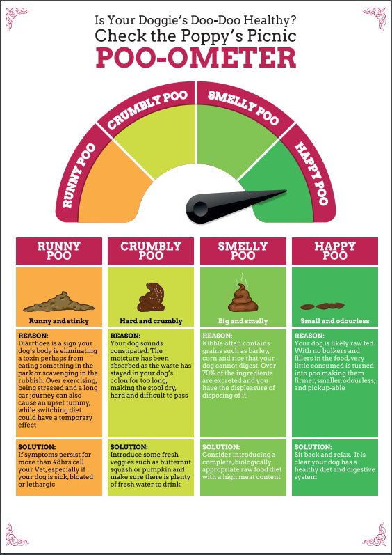 Dog Poo Chart Is Your Dog S Poo Healthy