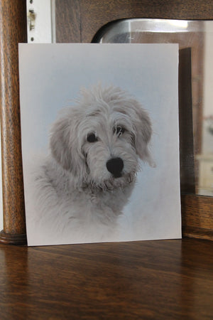 Goldendoodle Wall Hanging