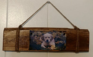 Golden Retriever Puppy Wall Hanging