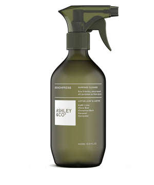Bench Press Bench Spray by Ashley & Co.