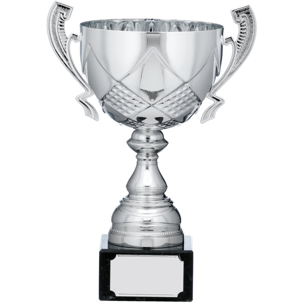 Silver Cup Trophy With Handles 26.5cm