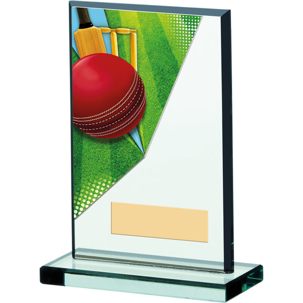 Cricket Acrylic Trophy 15cm