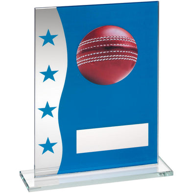 Blue/Silver Printed Glass Plaque With Cricket Ball Image Trophy - 8in