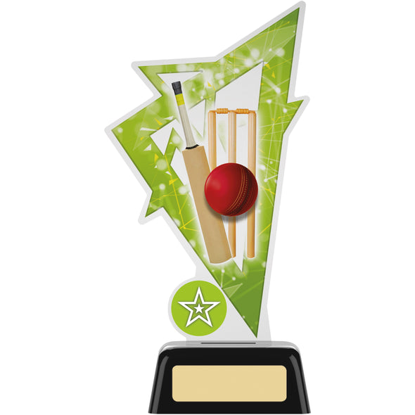 Cricket Acrylic Trophy 19cm