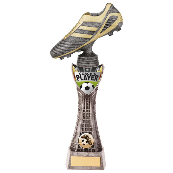 Striker Football Coach's Player Award 290mm