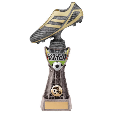 Striker Football Player Of Match Award 250mm