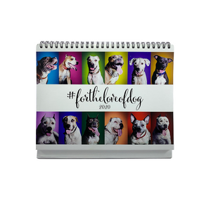 2020 Friendicoes Table Calendar (Pitbull Theme)