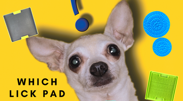 Which Lick Pad Is Best For Your Dog?