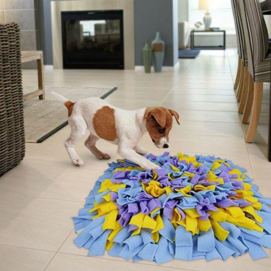 SNUFFLE MAT CONNECT