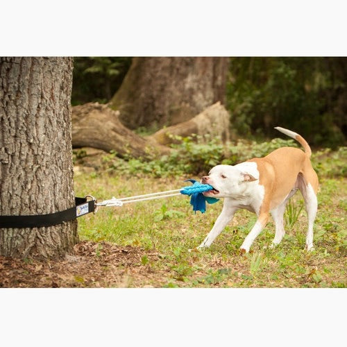 Super Tug | Tug Toy for Dogs