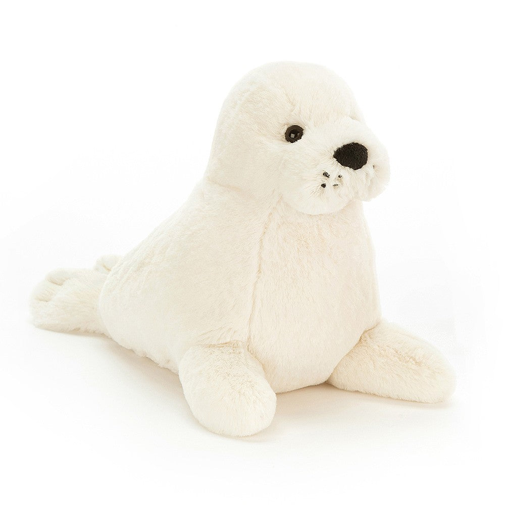 Rafferty Seal Pup