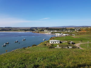 Explore the Chatham Islands