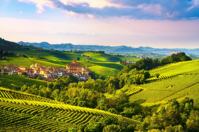 Vineyards and Royal Residences of Piedmont