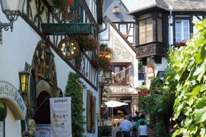 The romantic Rhine valley and Holland (port-to-port cruise)