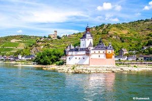 Festive cruise on the Rhine River (port-to-port cruise)