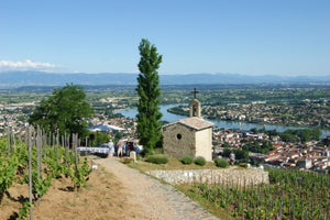 Oenological cruise: Discover the fabulous world of vines and wine (port-to-port cruise)