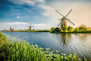 Holland and its tulips (port-to-port cruise)