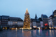 Christmas in Alsace and show at the Royal Palace (port-to-port)