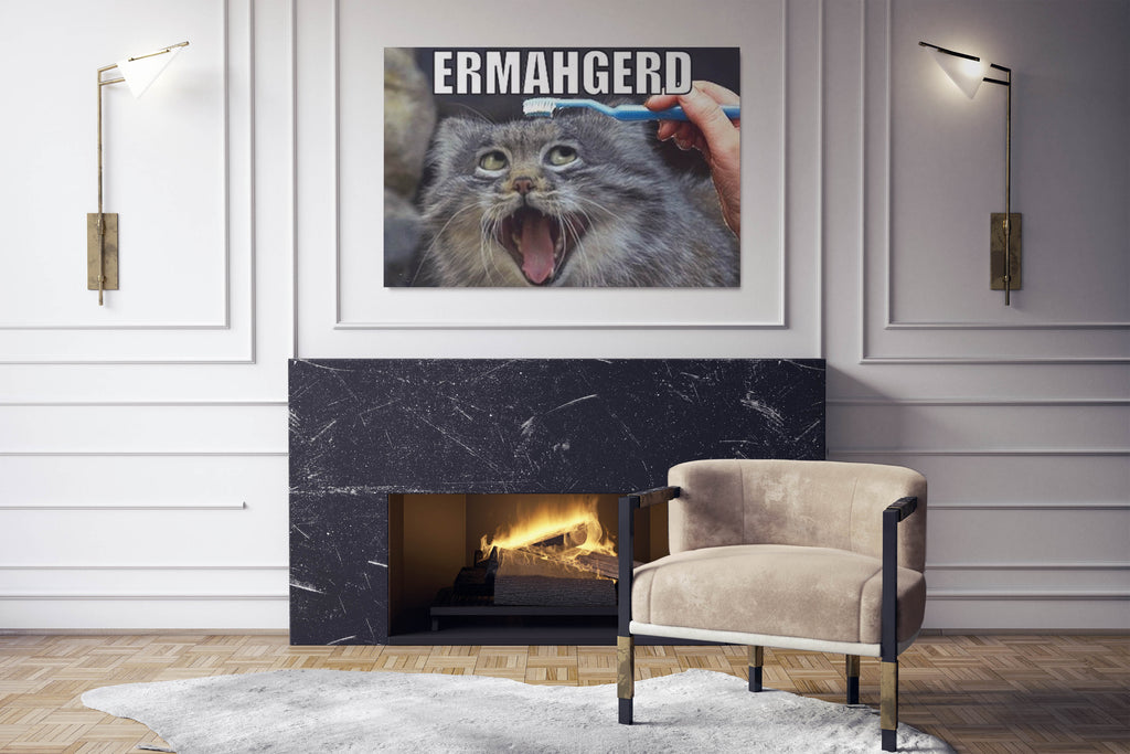 ermahgerd cat