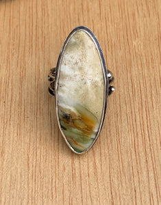 Oxide petrified wood, Ocean Beach sterling silver ring