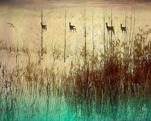 Grazing - Limited Edition Fine Art