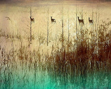 Load image into Gallery viewer, Grazing - Limited Edition Fine Art