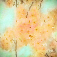 Load image into Gallery viewer, Gold Blossom - fine art