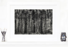 Load image into Gallery viewer, Into the woods - fine art limited edition artwork
