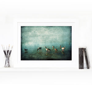 Ducks on Blue Ice- Limited Edition Fine Art