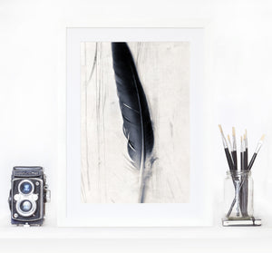 Feather plate - Limited edition fine art print photography