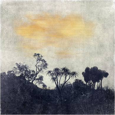 Constantia- Limited Edition Fine Art print