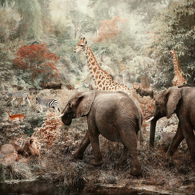 The Water Hole - Limited edition fine art print