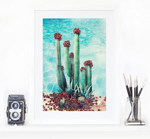 Cactus Pool - Limited Edition Fine Art