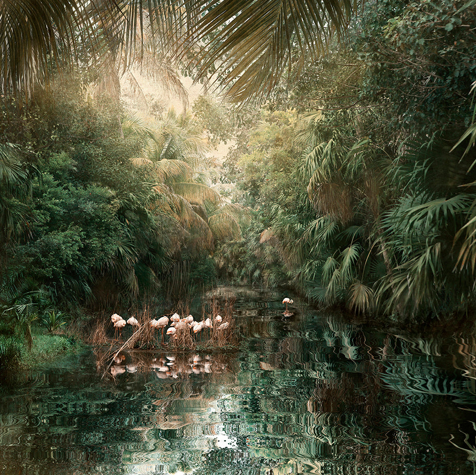 Backwaters Song - Limited Edition Fine Art print