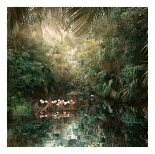 Load image into Gallery viewer, Backwaters Song - Limited Edition Fine Art print