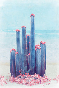 Cactus Beach - Limited Edition Fine Art print