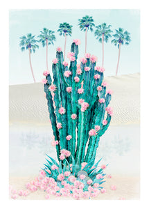 Cactus Oasis - Limited Edition Fine Art